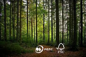 Norma FSC/PEFC